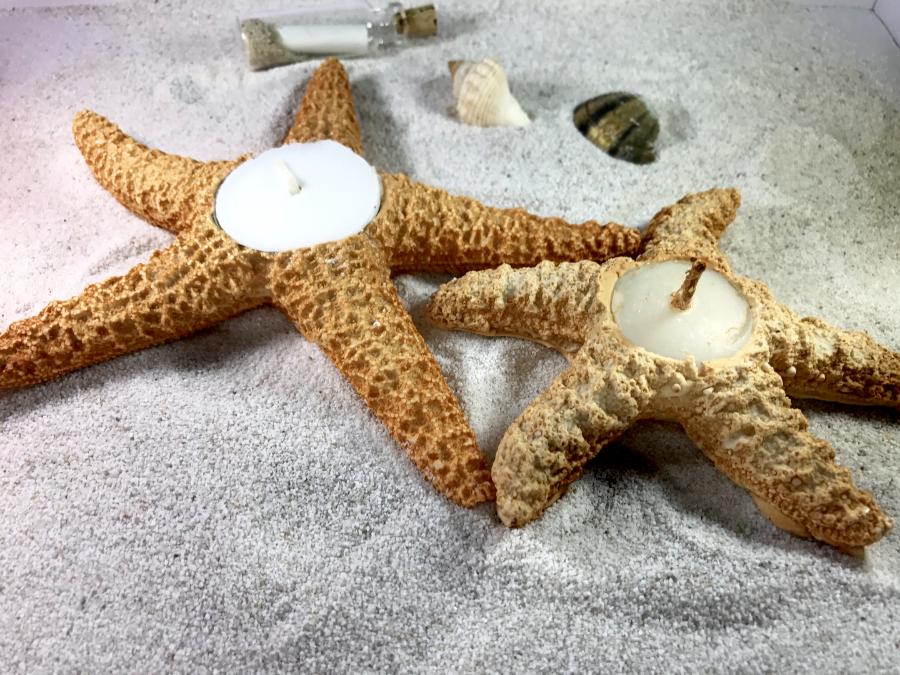 Venta de estrellas de mar proveedores para tu boda en la - Proveedores de velas ...